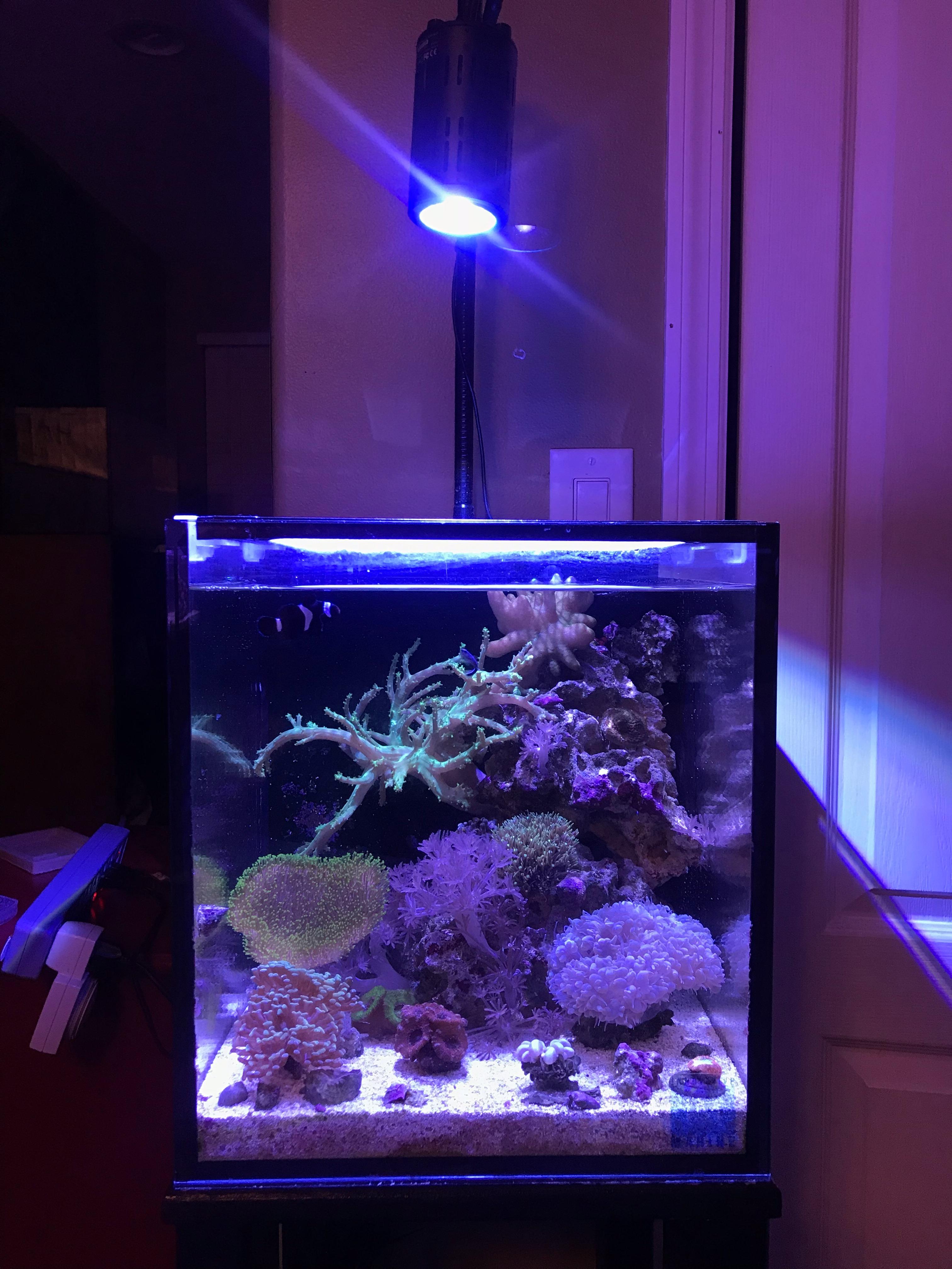 aquatic led small usd tank product aquarium mini lamp fish cylinder grass lights stand clamp light